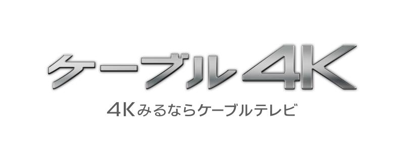 日本デジタル配信
